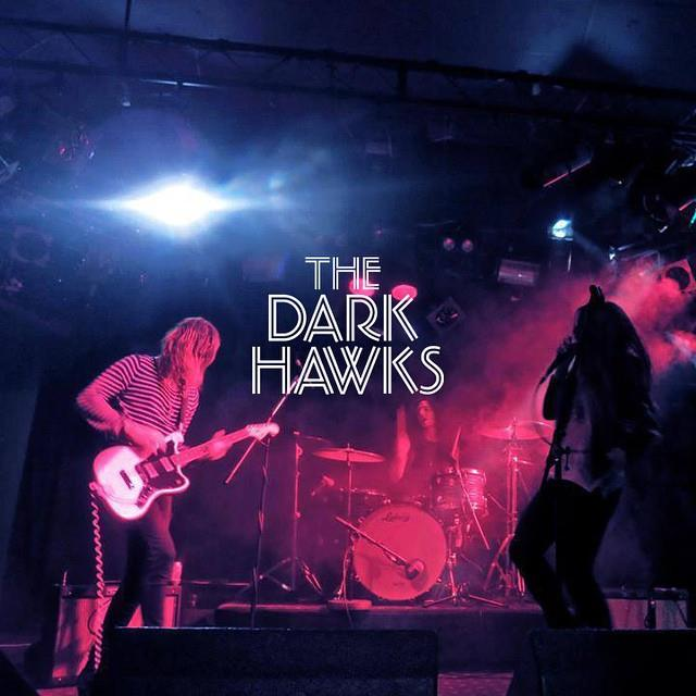 dark hawks
